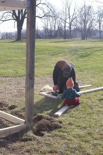 man building chicken run with baby