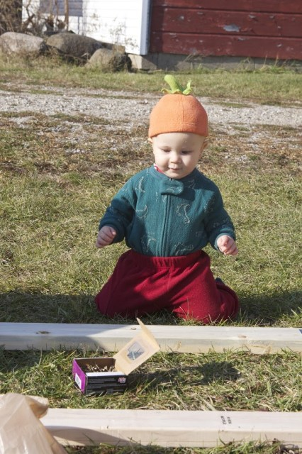 baby seated and examining nails and wood planks