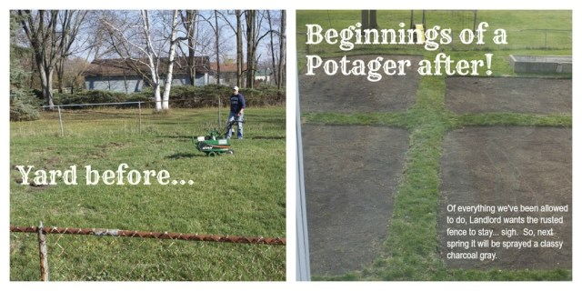 potager garden before and after