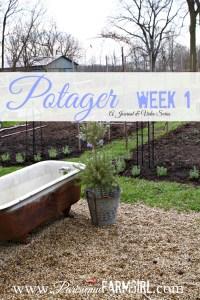 My Potager week by Week