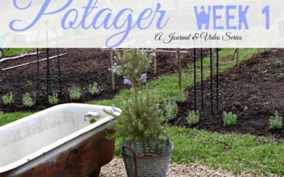 Week by Week in my Potager