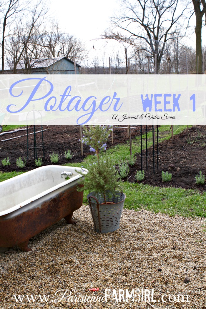 My Potager week by Week