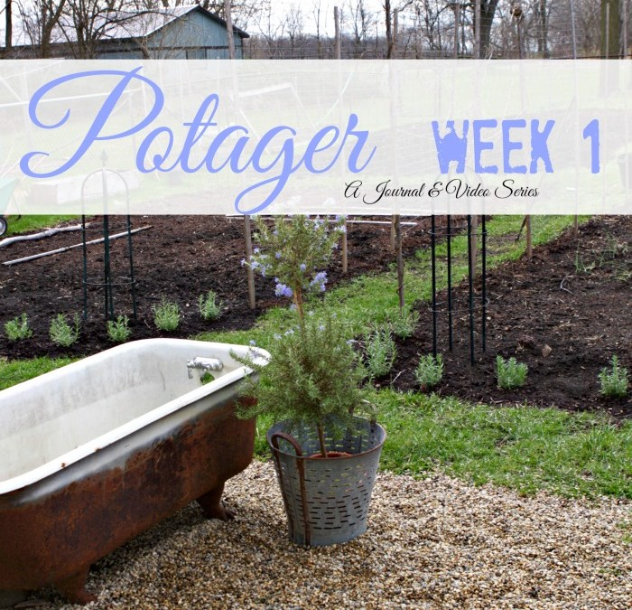 Week by Week in my Potager