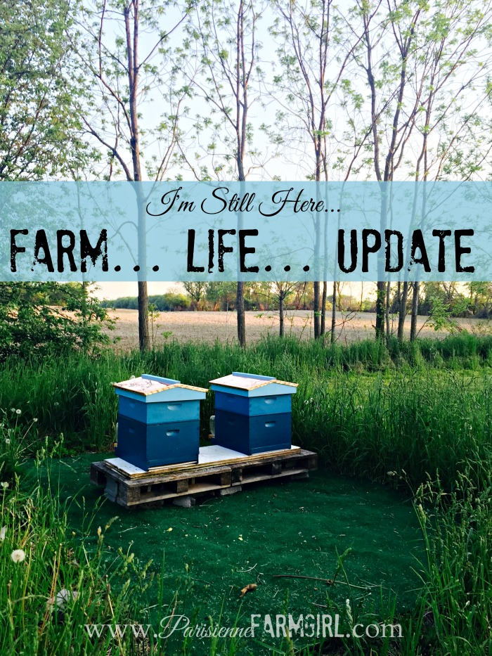 I'm Still Here (Farm Life Update) | Parisienne Farmgirl