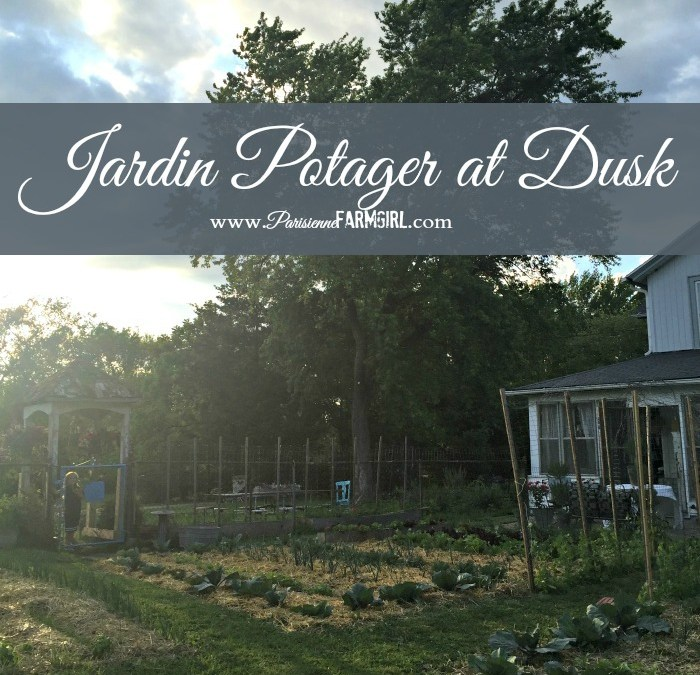 Potager…The Garden at Sunset