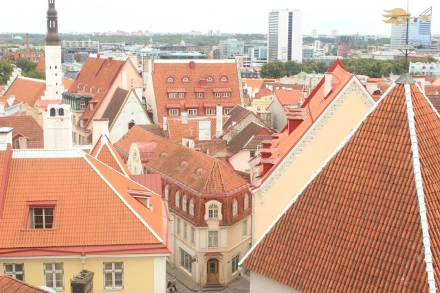 Tallinn-Belvedere
