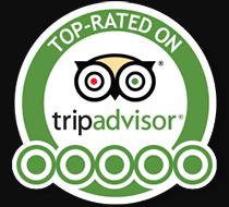 Segway Tour Avis Tripadvisor