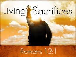 Living sacrifices Romans 12.1