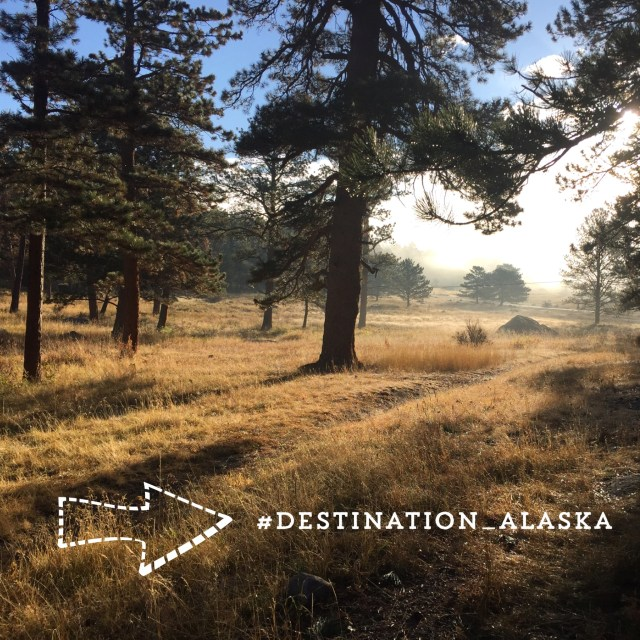 Destination Alasak
