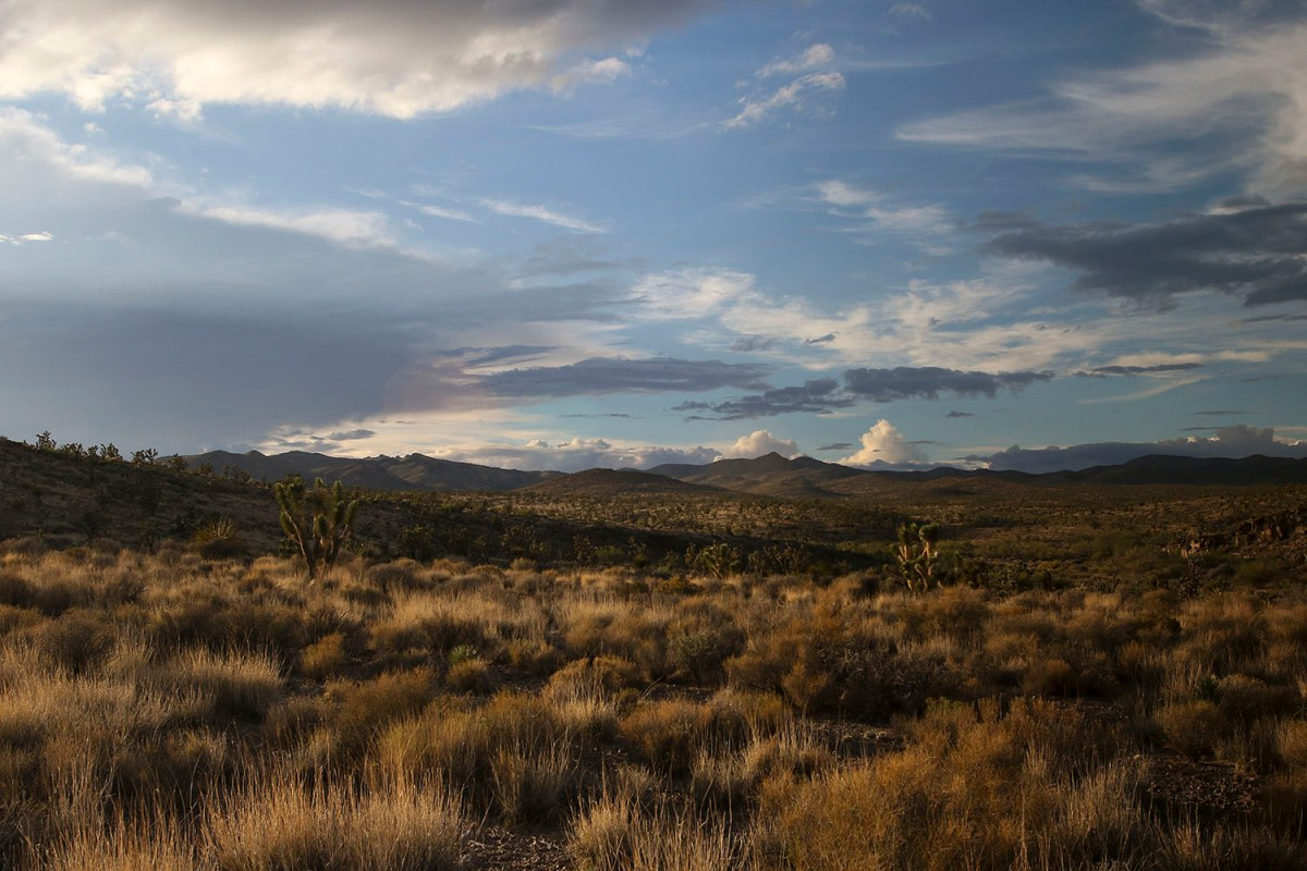 Castle Mountains National Monument -  Photo Credit: WhiteHouse.gov