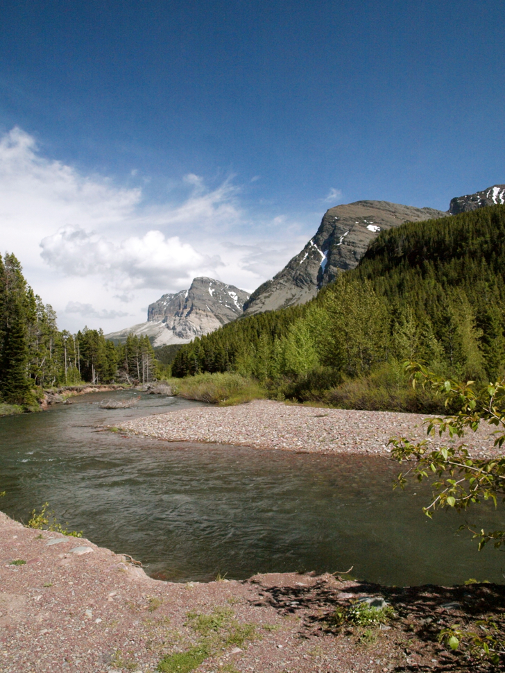 Many Glacier Campground, one of the places to see Wildlife in Glacier National Park