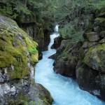 Hiking Glacier National Park:  The Avalanche Lake Trail
