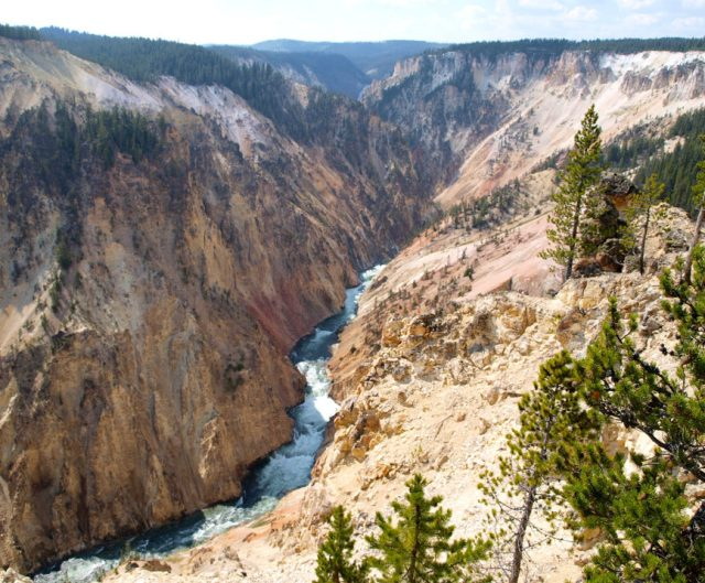 The Grand Canyon of Yellowstone from the North Rim