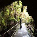 Hiking Hawaii Volcanoes National Park: The Thurston Lava Tube