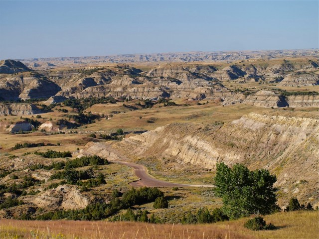 Scenic Loop Drive is one area to see wildlife in Theodore Roosevelt National Park