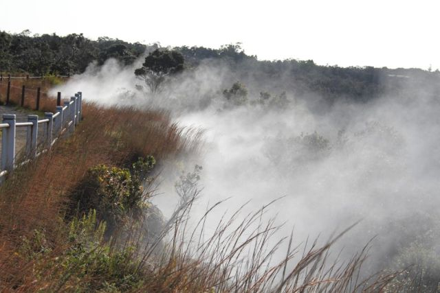 Steam vents in Hawaii Volcanoes National Park