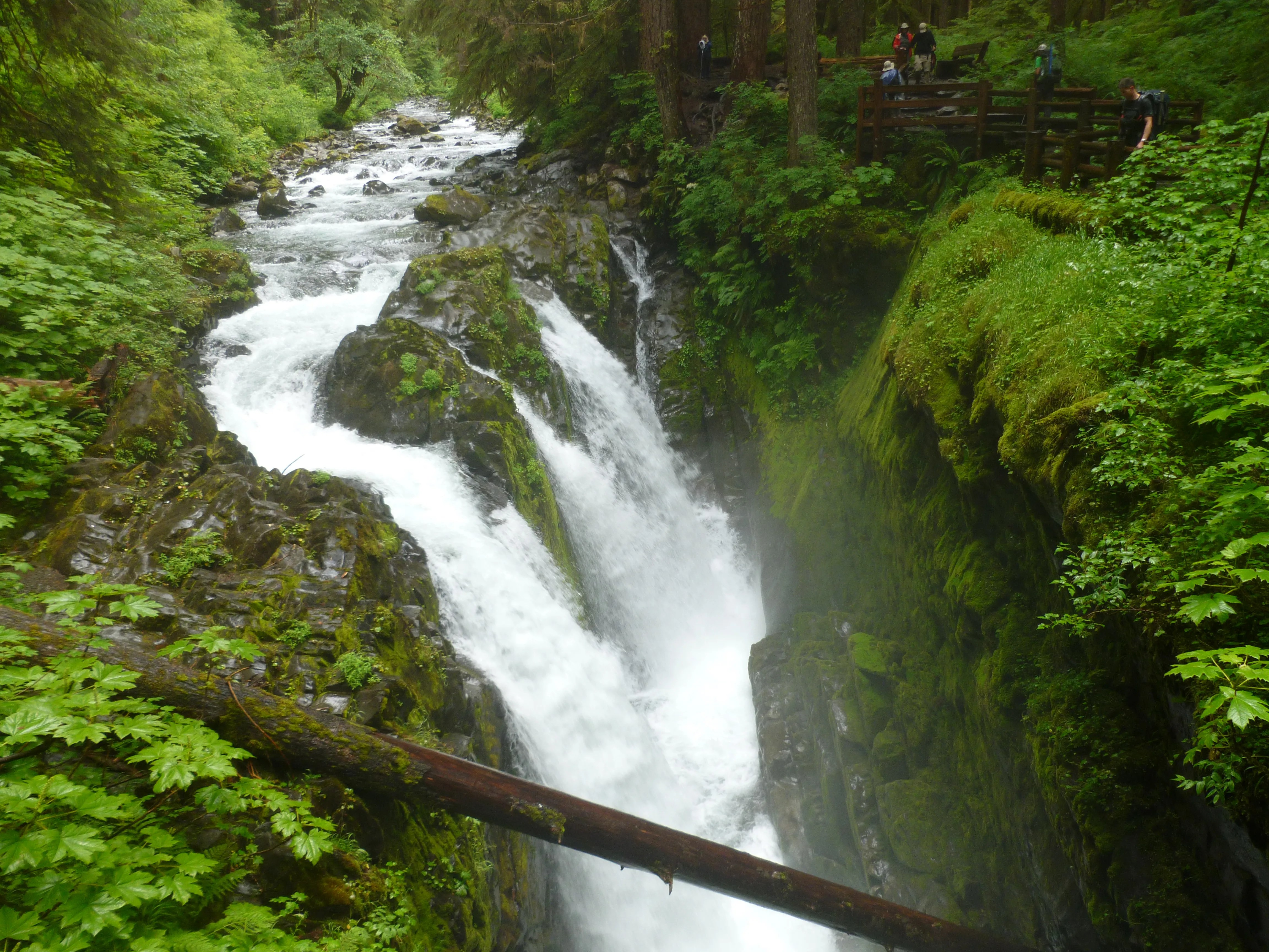 Olympic National Park: Sol Duc Falls Trail