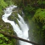 Hiking Olympic National Park: Sol Duc Falls Trail