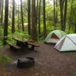 Camping in Olympic National Park: The Kalaloch Campground