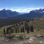 Hiking Glacier National Park:  The Highline Trail