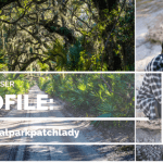 Park Chaser Profiles:  National Park Patch Lady