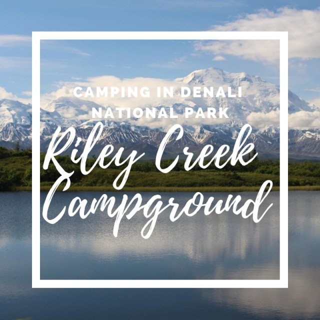 Image of Denali with Riley Creek Campground header