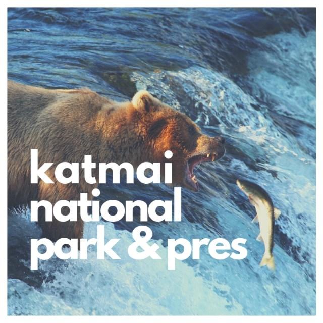 Katmai national park and preserve bear header