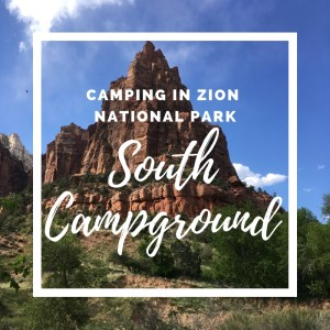 Camping in Zion National Park - The South Campground