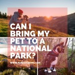 Q & A:  Can I bring my pet to a national park?