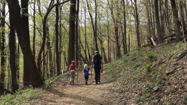 Everybody's National Parks at Shenandoah National Park