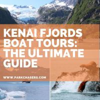 10 Things to Know About Kenai Fjords Boat Tours