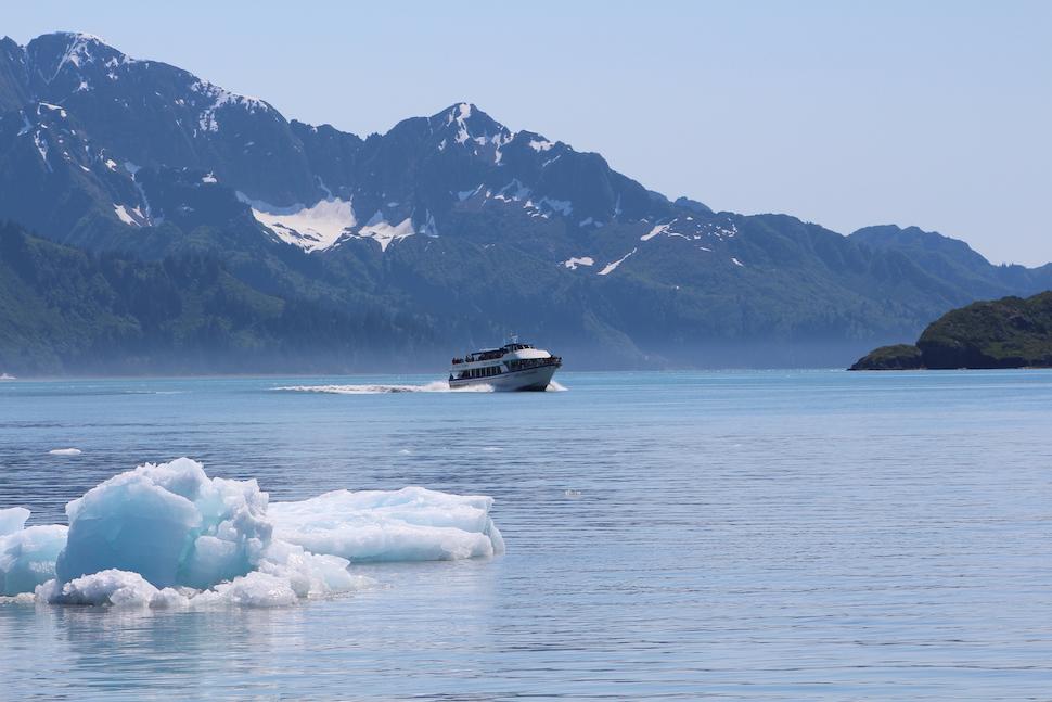 Kenai Fjords Boat Tour