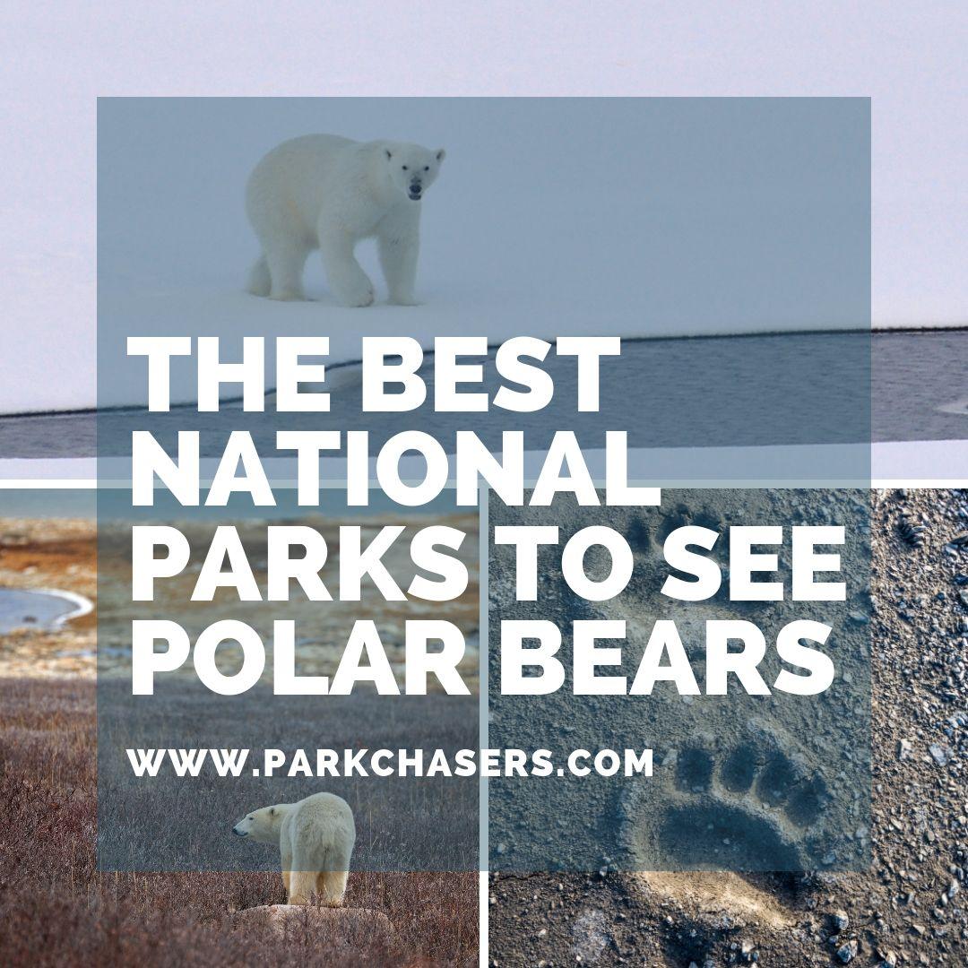 National Parks with Polar Bears