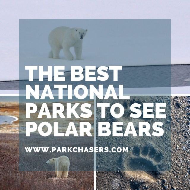 National Parks with Polar Bears