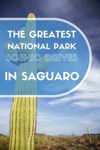 Scenic Drives in Saguaro National Park