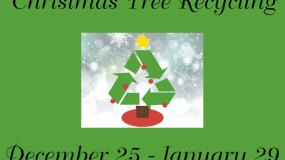 Parker & Douglas County Christmas Tree Recycling Info