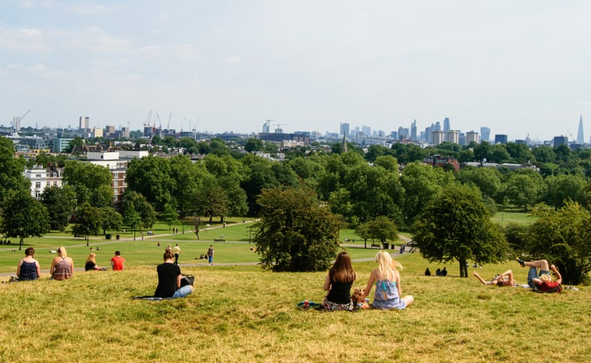 Image result for Primrose Hill