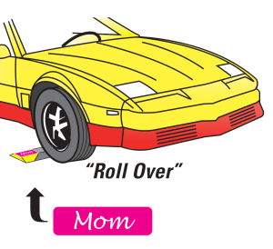 roll over car