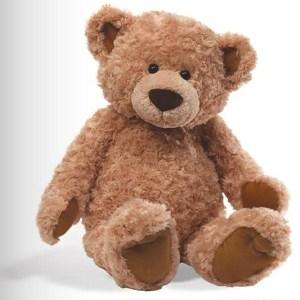 A Teddy Bear Who Needed A Chance