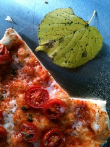Pizza & Leaf