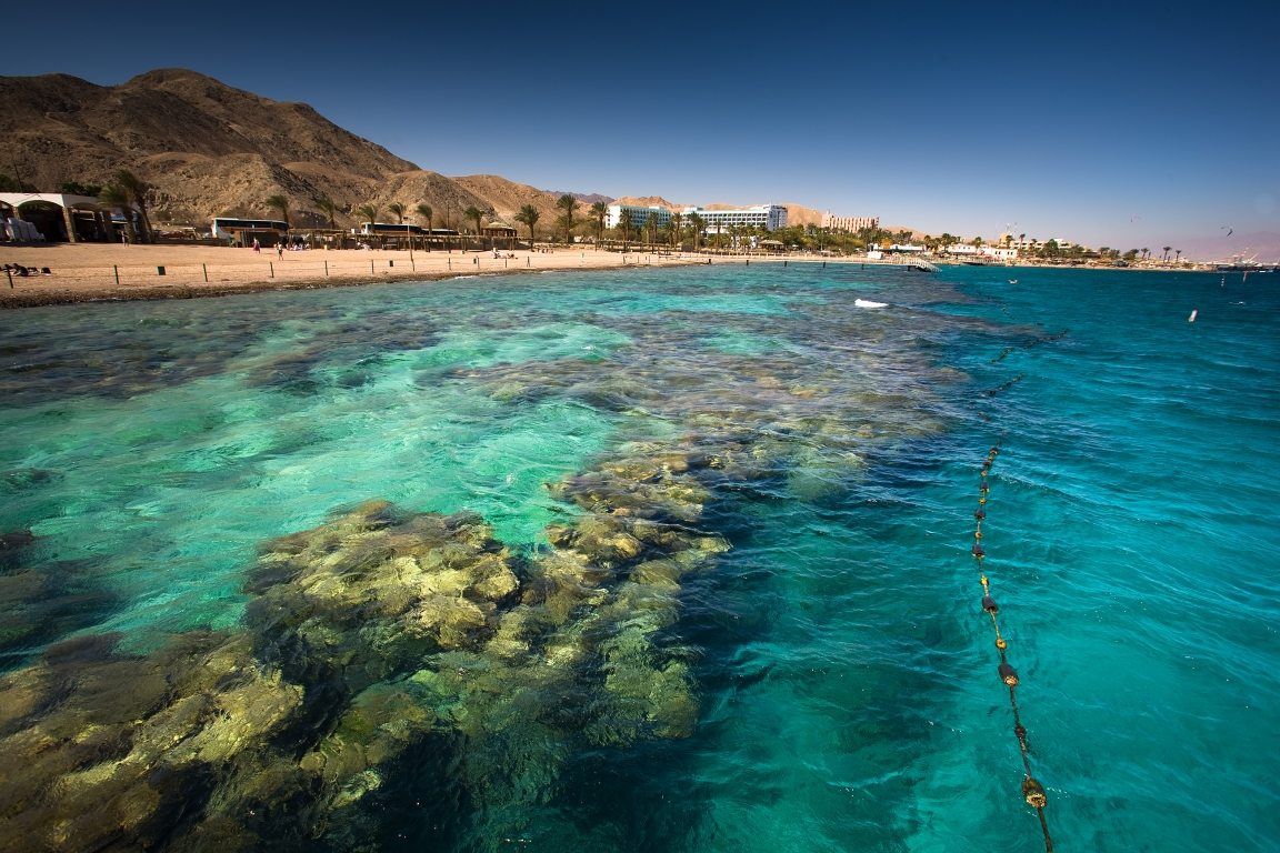 Eilat Coral Beach Nature Reserve  Israel Nature and Parks