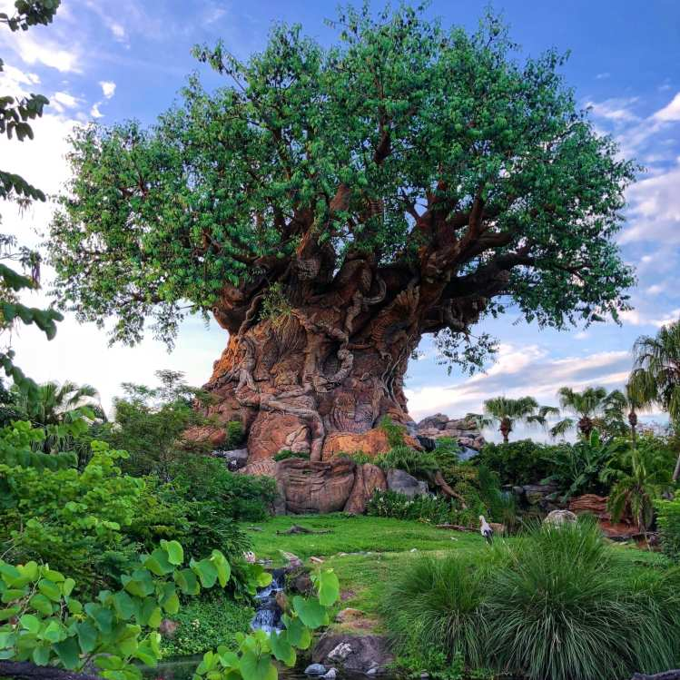 Walt Disney World Fun Facts