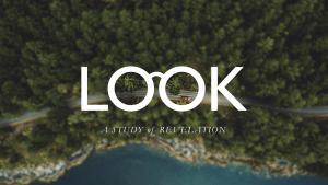 Look-HD