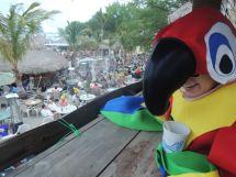 Parks Marina Barefoot Bar Okoboji
