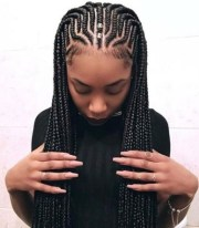 natural hairstyles - braids of
