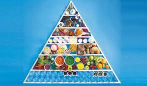 alimentarsi o nutrirsi