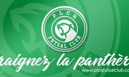 Tour des clubs de la Loire : le PLCQ Futsal Club représenté jusqu'à Clairefontaine
