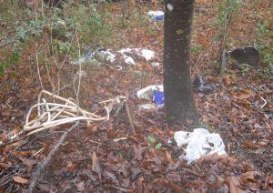 Albareto rifiuti