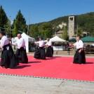 Prelerna Aikido