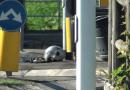 Collecchio via Rosselli. Un motociclista 64enne di Medesano portato a sirene spiegate al Maggiore di Parma